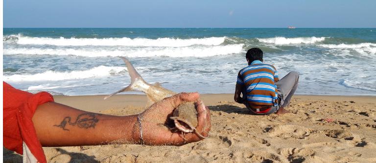 Partie de pêche sur la plage à Auroville